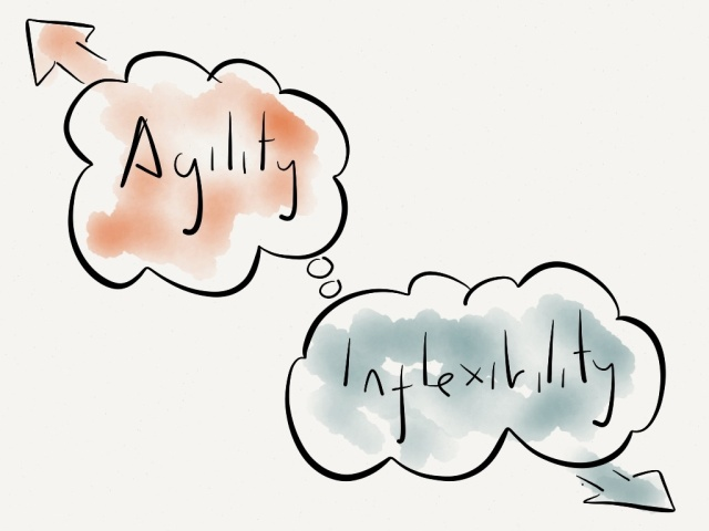 The tug of war between 'agility' and 'inflexibility'