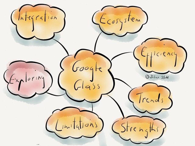Google Glass: the ecosystem of agility
