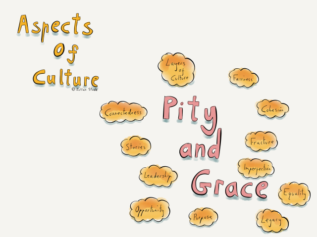 An imperfect humanity: grace and pity