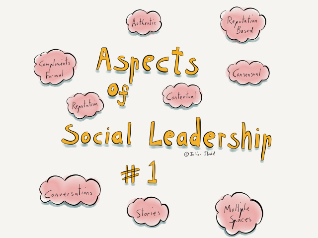 Aspects of Social Leadership #1