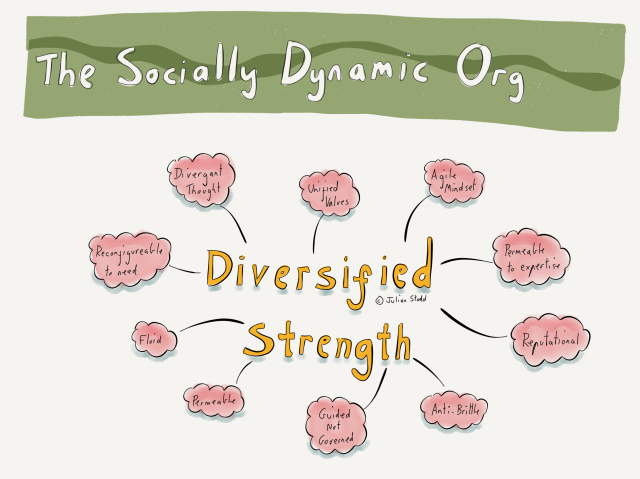 Aspects of the Socially Dynamic Organisation - Diversified Strength