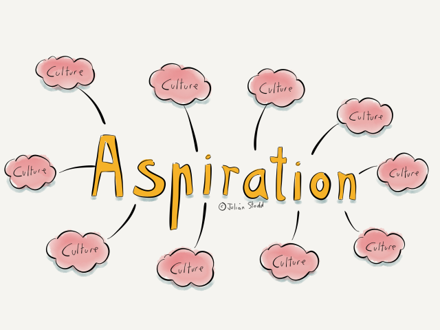Aspiration and culture