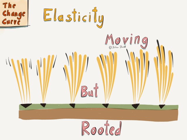 Elasticity: Moving but Rooted