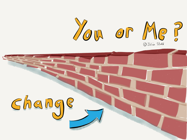Organisational Change - it's not me
