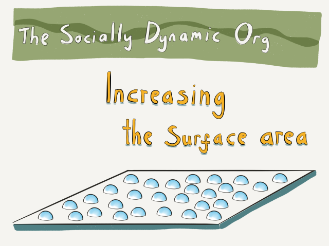 The Socially Dynamic Organisation - Increased Surface Area