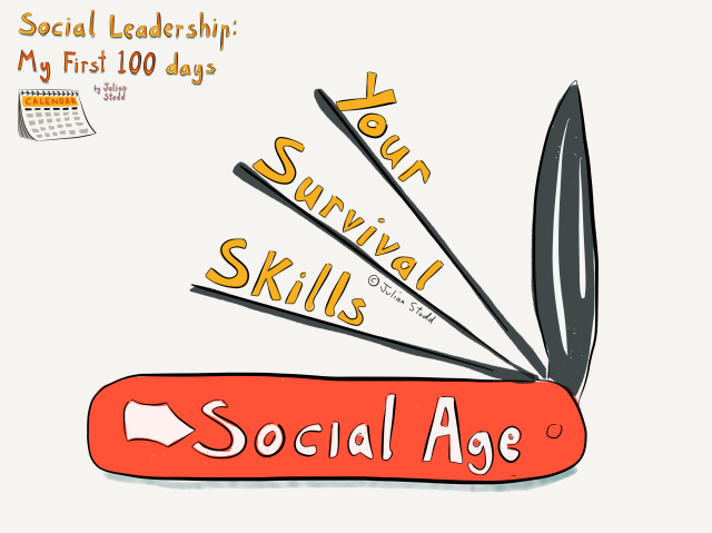 Social Leadership 100 - Skills for the Social Age