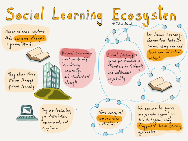 The Ecosystem of Social Learning