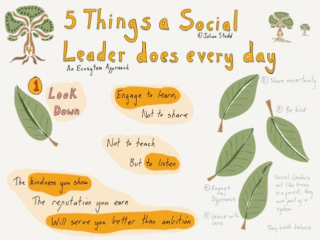 Social Leadership - looking down